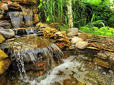 Medium-sized waterfall with a pond, stone rocks, and large plants around it.