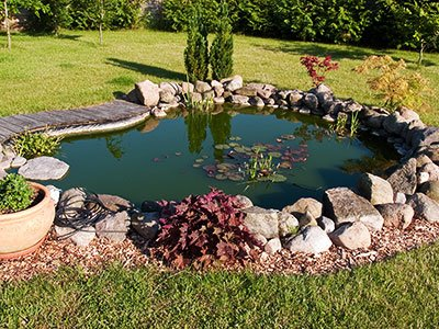 Medium-sized water pond, with stone rocks, greenish water, and floating leaves.