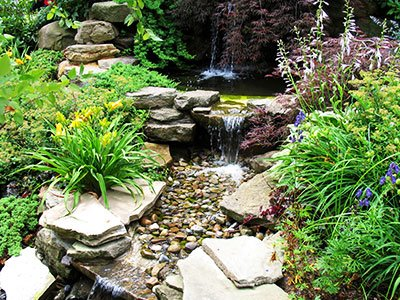 Pondless water feature with big stone steps, a waterfall, and green plants all over the place.