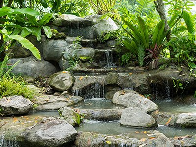 Small pondless water feature, with a small stream, stone rocks, and exotic plants.